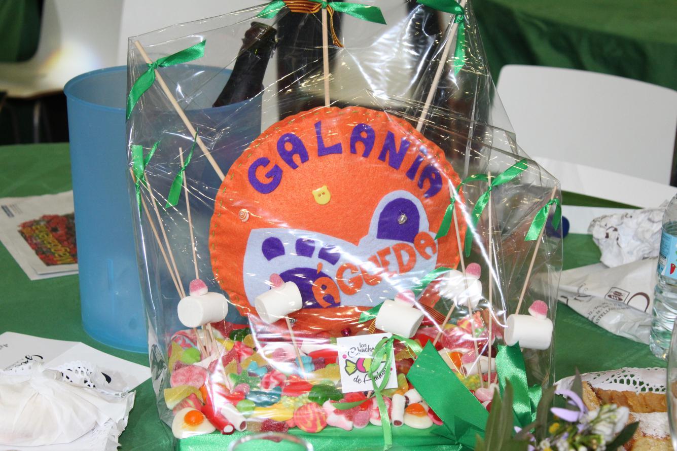 GALANIA_2165