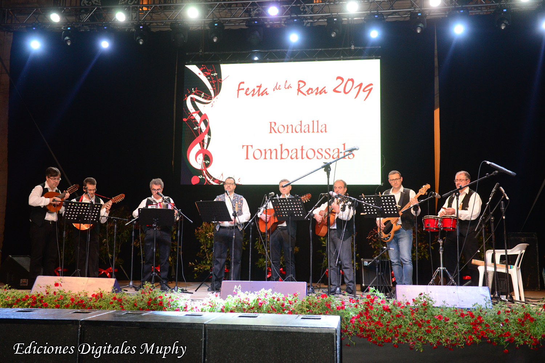 festa de la rosa (6)